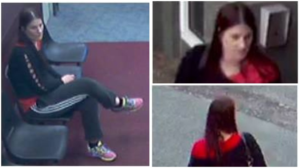 NSW Police have released CCTV images of Ms Bremer in the Logan area. (NSW Police)