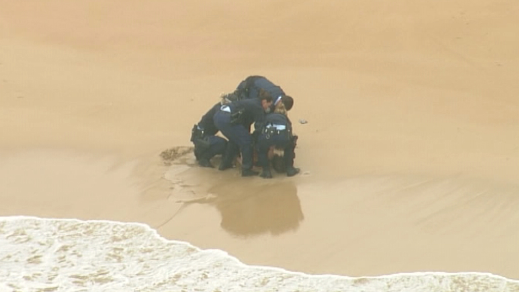 Man arrested on Freshwater beach after allegedly attempting to swim from police