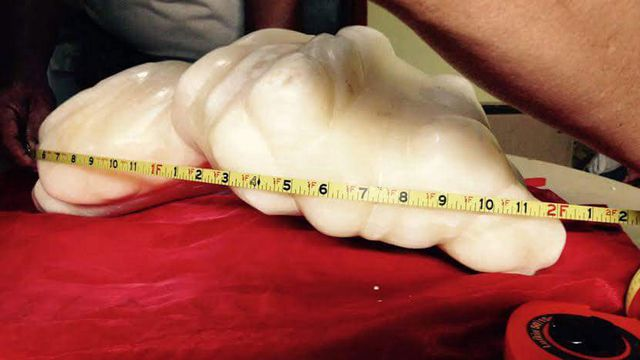 Filipino fisherman keeps world's largest pearl under wraps