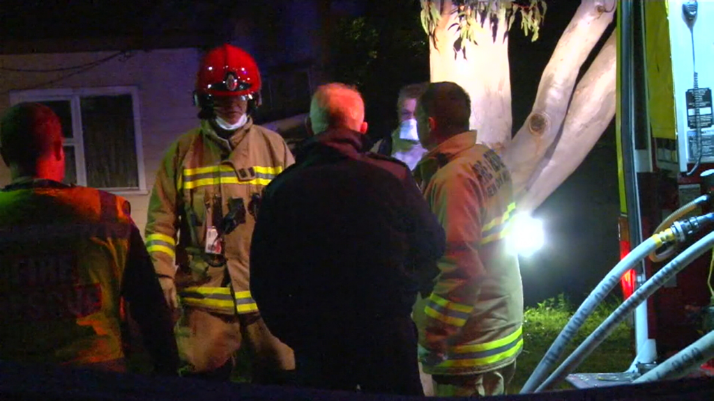 Sydney man's home destroyed by fire after he allegedly threatened firefighters with an axe