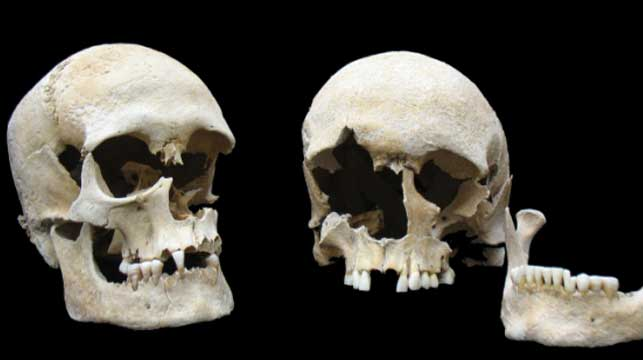 Scientists revive ancient plague that wiped out half of Europe
