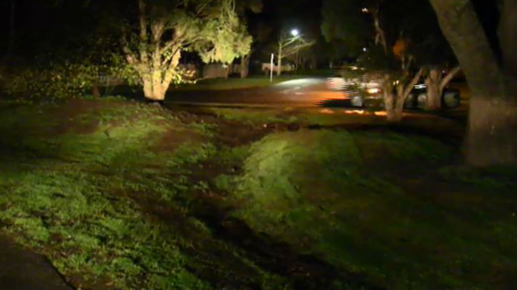 The male driver is still on the run. (9NEWS)