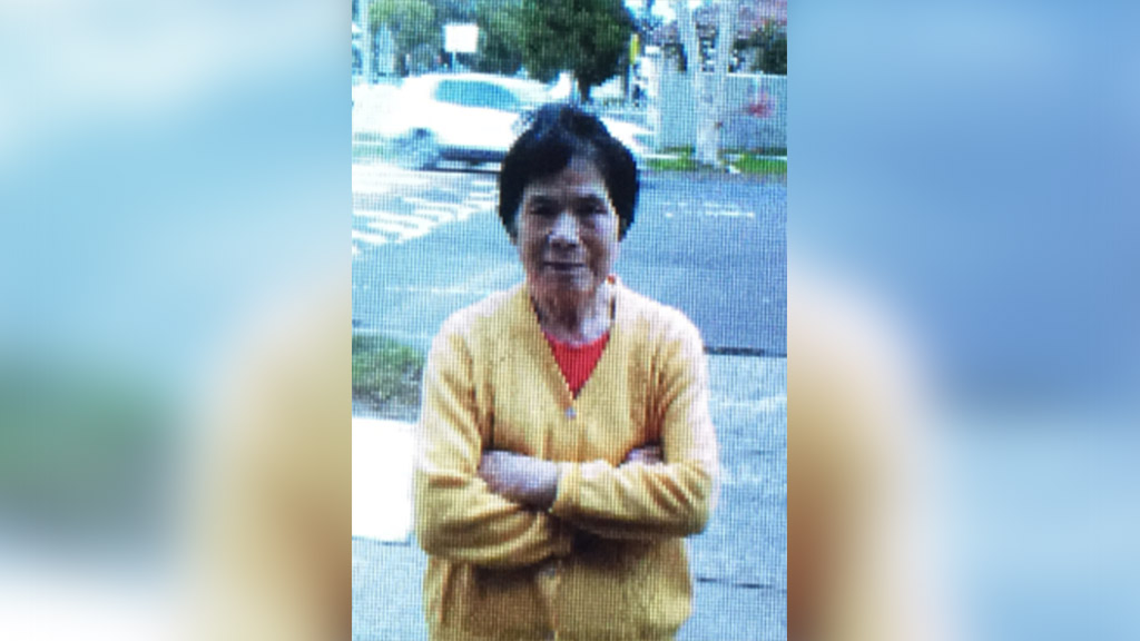 Elderly woman missing from western Sydney overnight