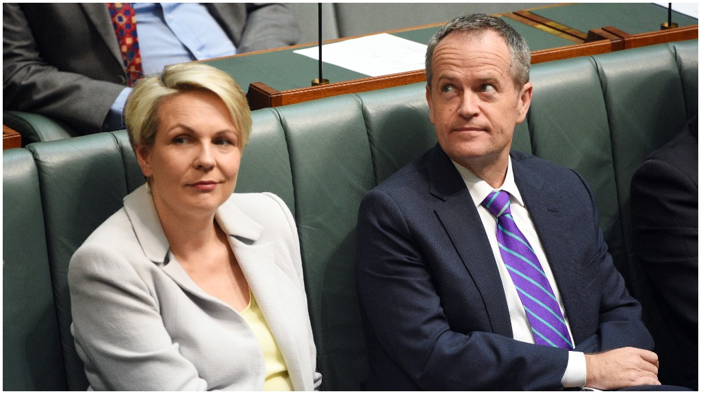 Deputy Leader of the Opposition Tanya Plibersek and Leader of the Opposition Bill Shorten after introducing a same sex marriage bill in the House of Representatives. (AAP)