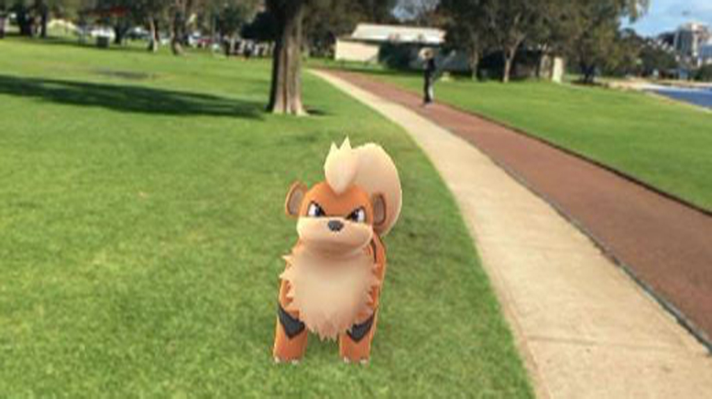 Pokémon catcher rescued from Perth's Swan River