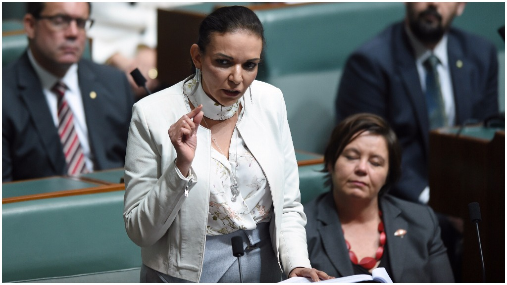 First female Muslim MP Anne Aly says she has seen the 'worst and the best' of humanity in maiden speech