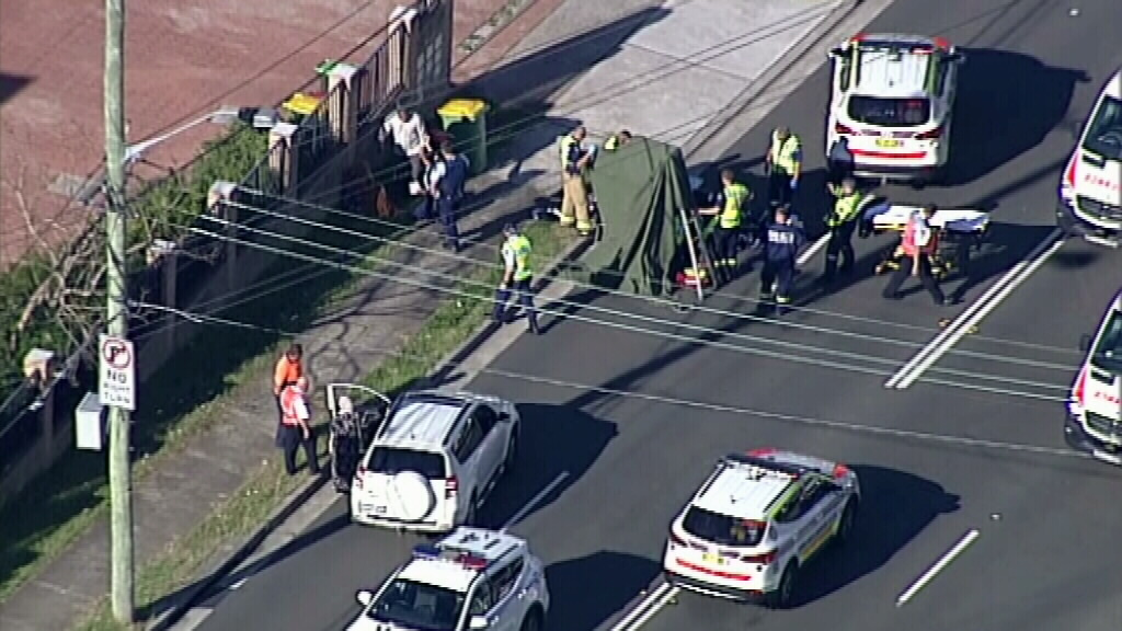 NSW police said the driver stopped immediately after the collision. (9NEWS)