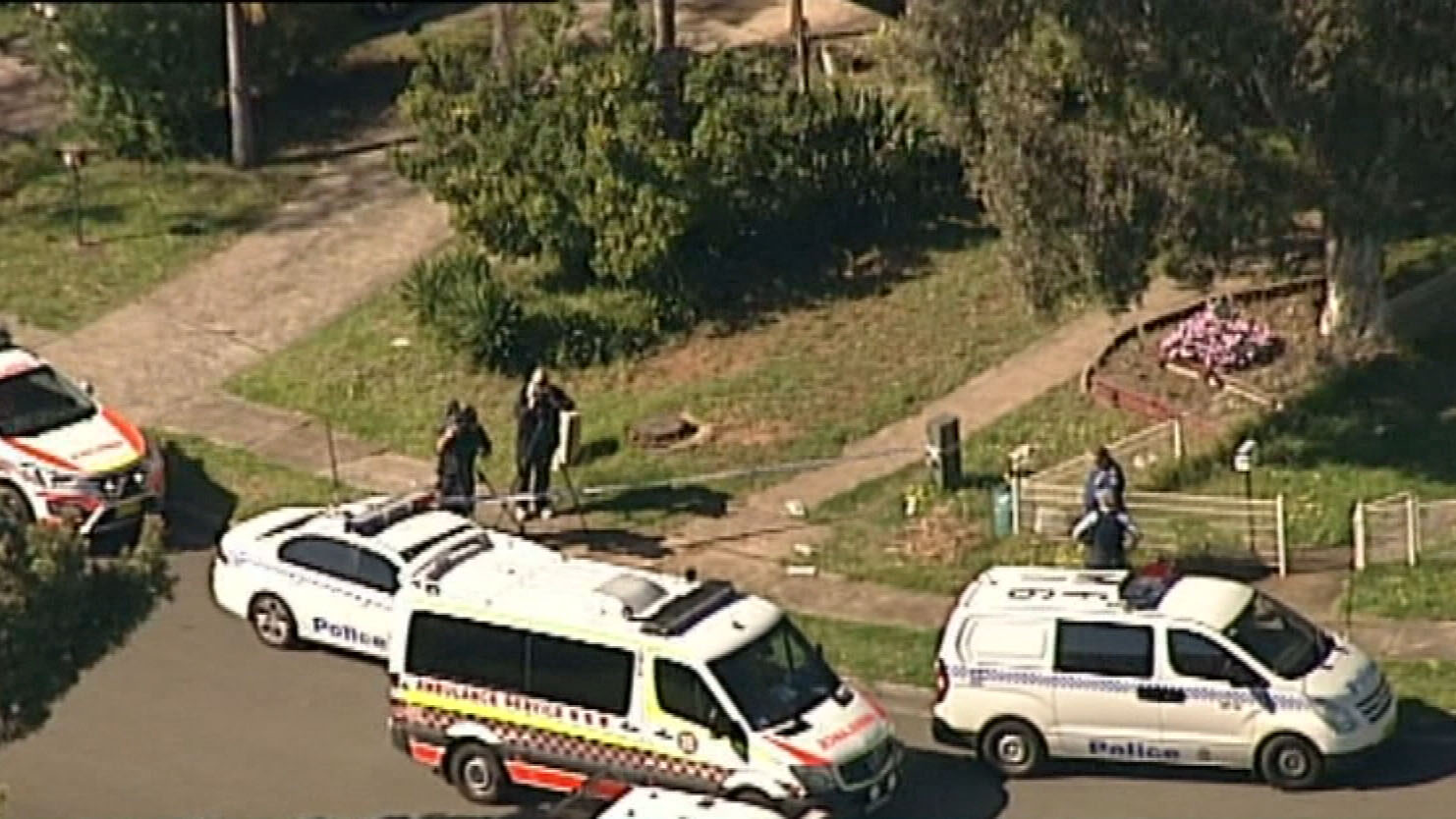 Two offenders are involved, police said. (9NEWS)