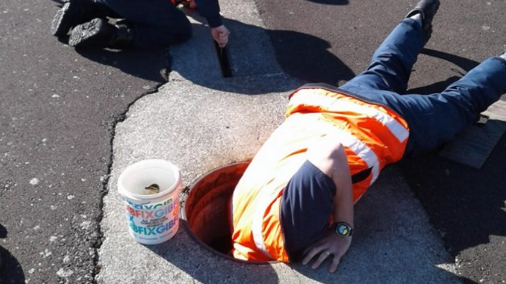 Rescuers reached into a manhole to retrieve the ducks. (Royal NZ Air Force Facebook)