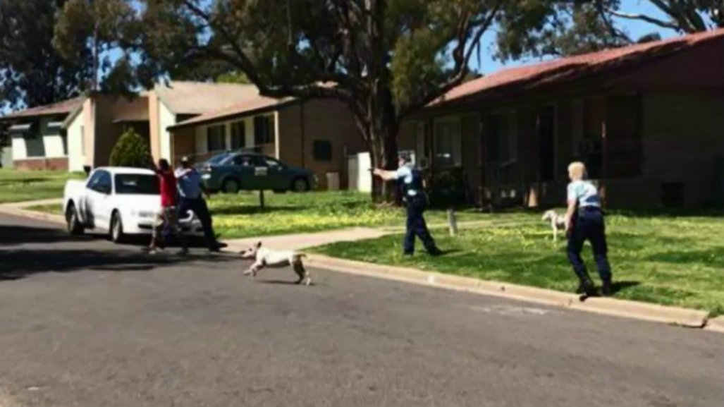 Man shot by police during confrontation in central New South Wales