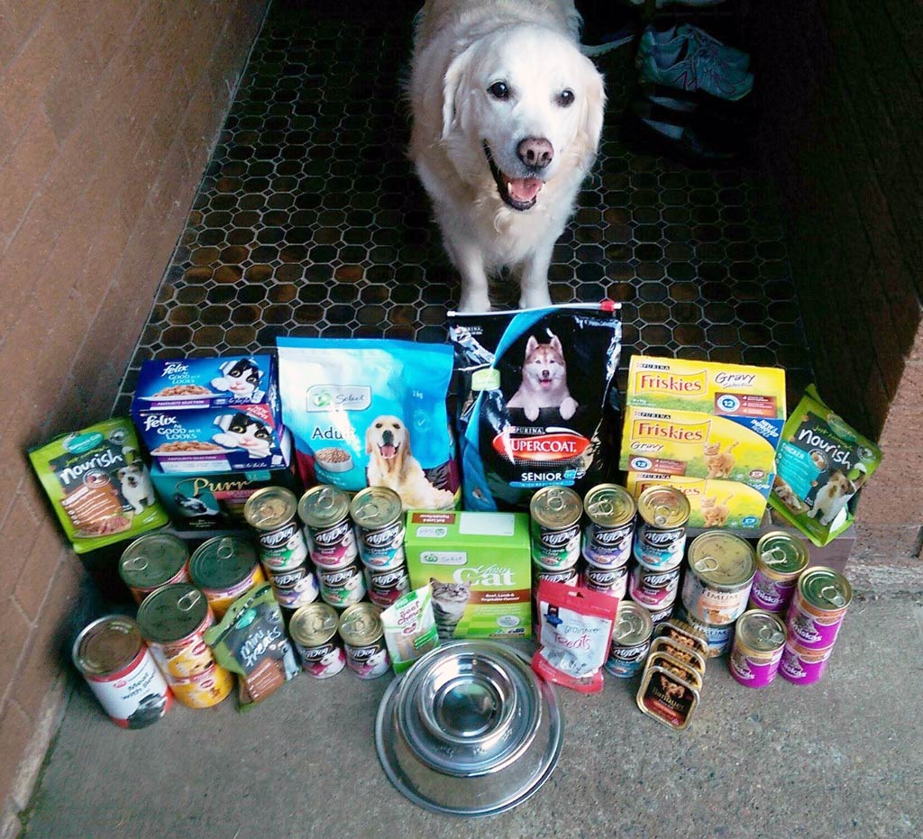 Some of the many goods donated to Rescue Resource-NSW. (Deborah Williams/Rescue Resource-NSW)