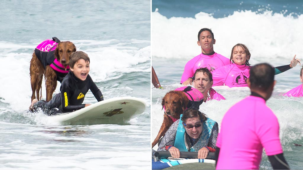 Boy with autism inspired by friendship with surfing dog to help others