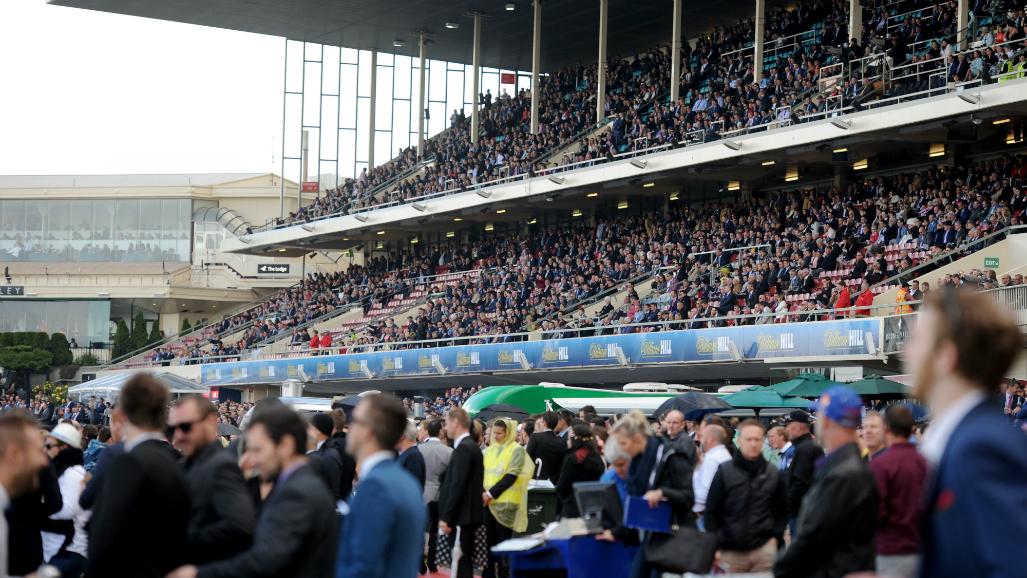Drunk Melbourne Cup racegoers could face $777 fine