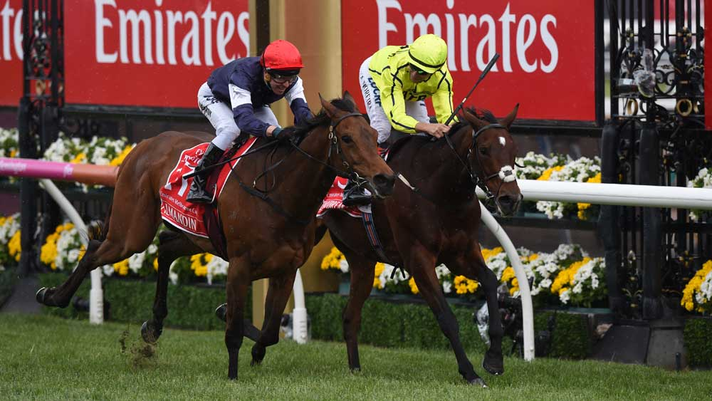Almandin wins great duel to claim Melbourne Cup