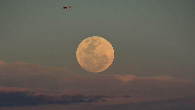 In pictures: Rare supermoon stuns Australian stargazers