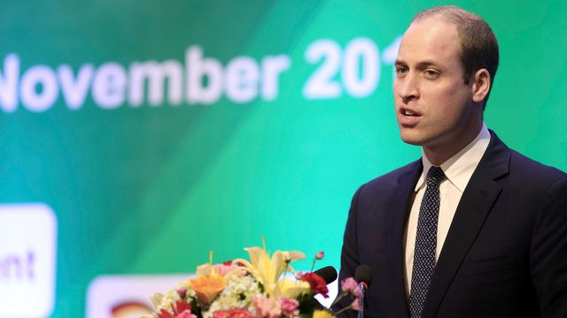 In pictures: Prince William visits Vietnam to fight illegal wildlife trade