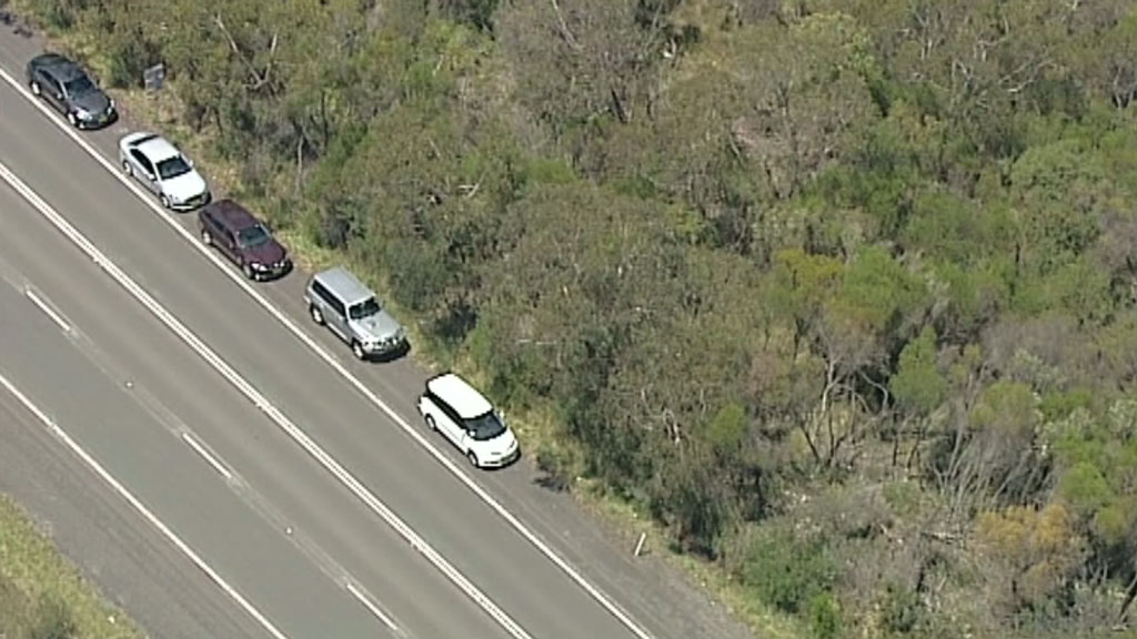 Vehicles at the scene.(9NEWS)