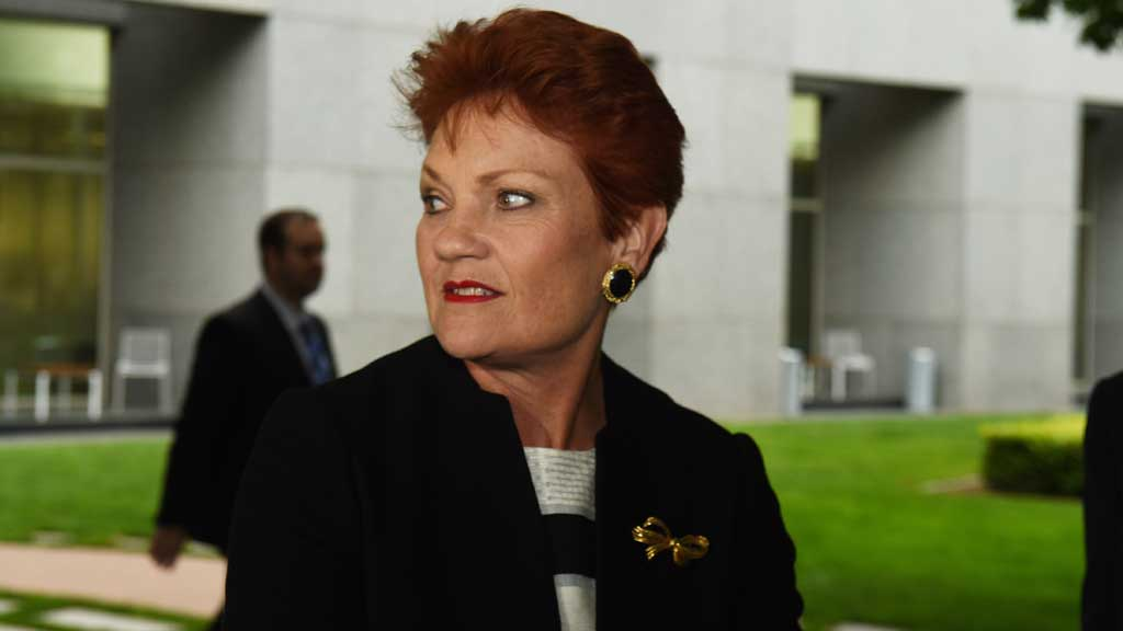 Culleton to keep tacking his own way