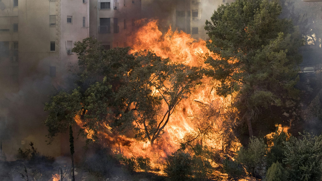 A picture taken on November 24, 2016 shows a fire raging in the northern Israeli port city of Haifa. (AFP)