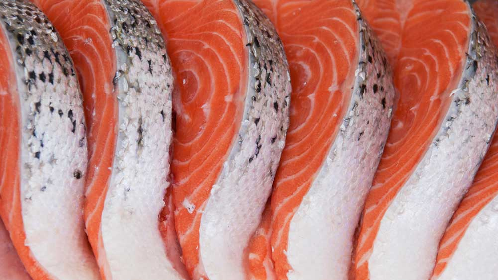 The Truth About Farmed Salmon Colouring Are Salmon Dyed And Are