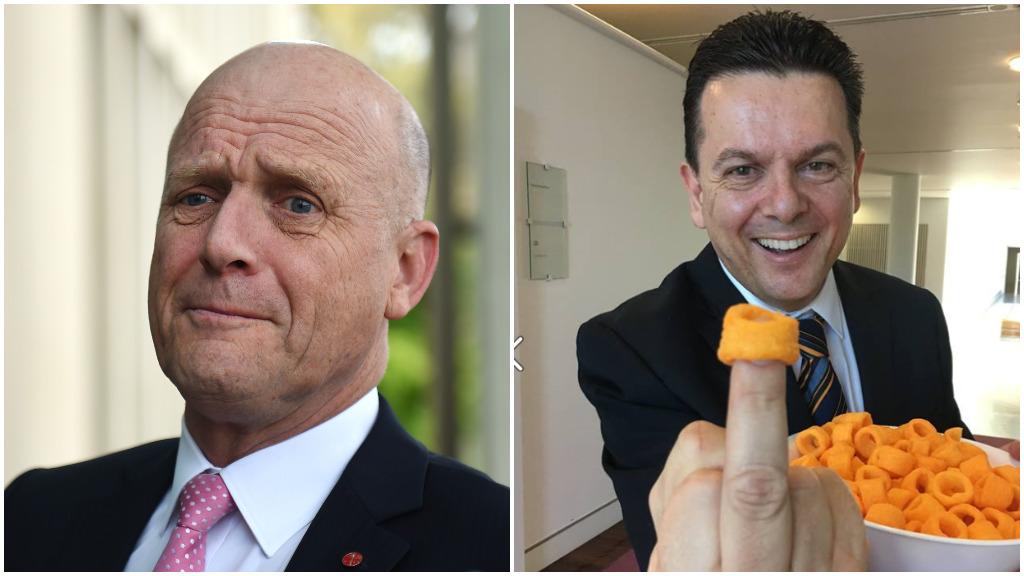 Senator Leyonhjelm likens SA government to 'obese 40-year-old man'