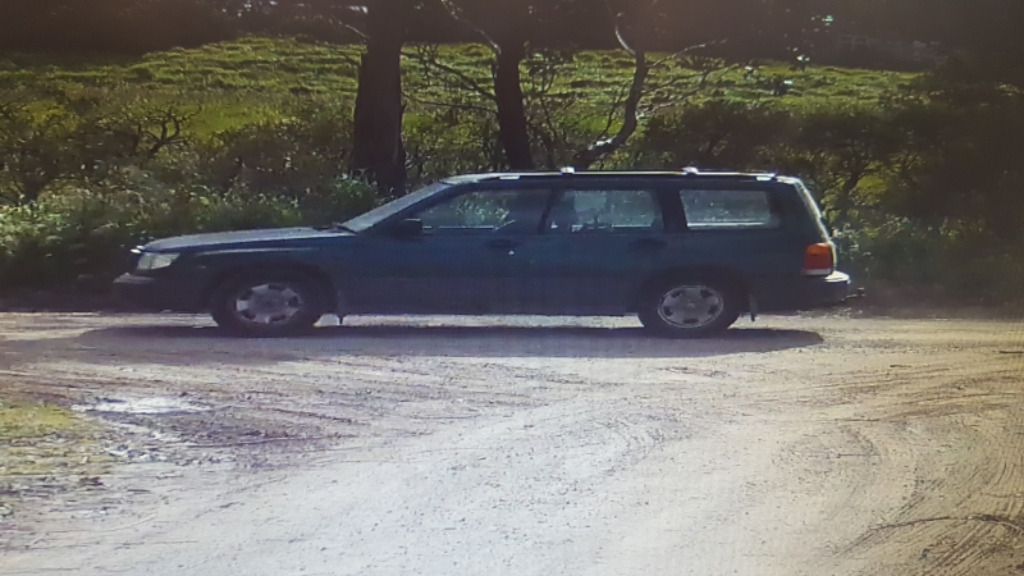 A green Subaru station wagon similar to the one driven by the alleged offender. (Victoria Police)