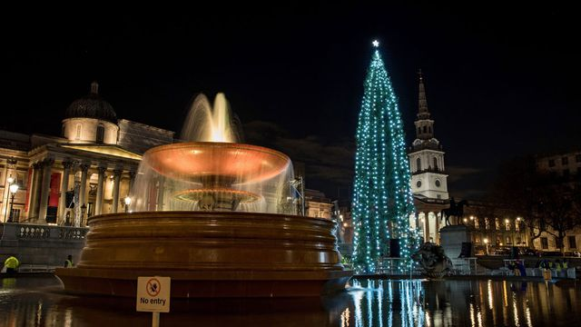IN PICTURES: Disappointed Londoners say Trafalgar Christmas tree looks like 'gherkin draped in lights'
