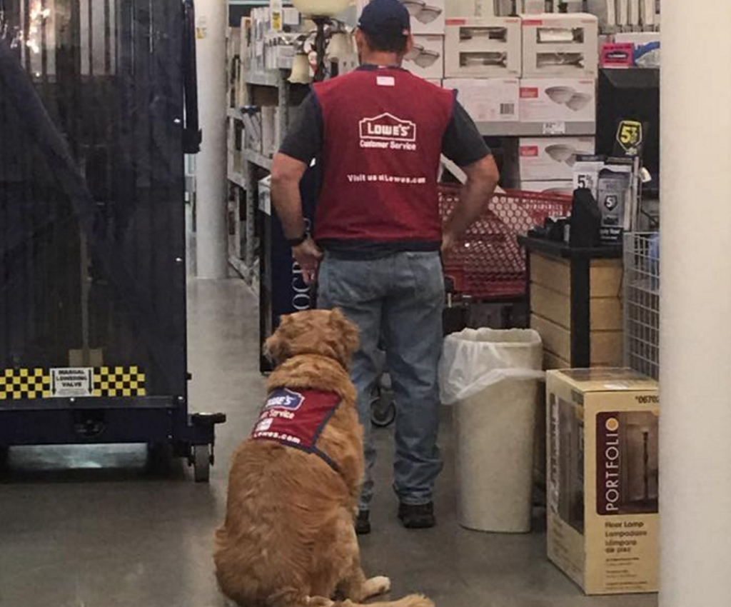 Disabled veteran Clay Luthy and his service dog Charolette now work at a hardware shop. (Facebook / Judy Dechert Rose)