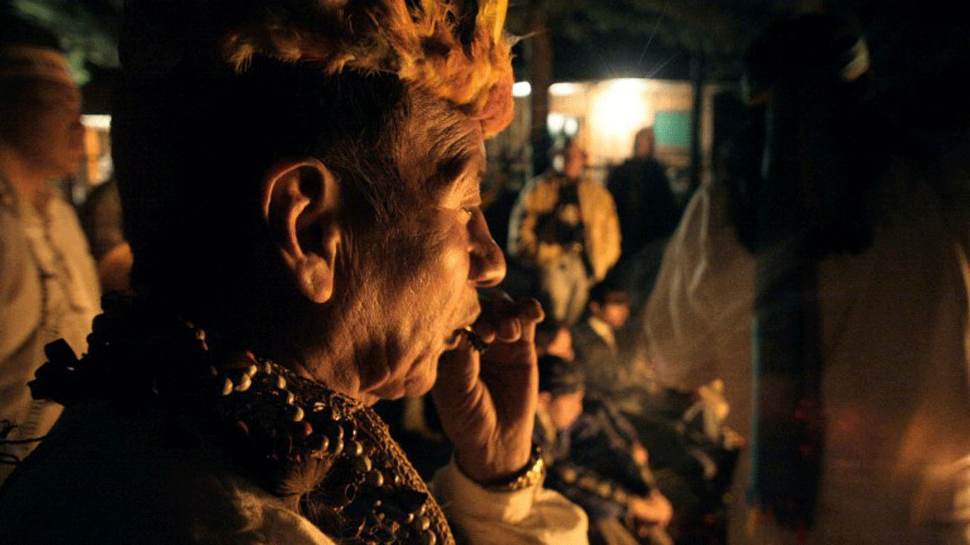 Hallucinogenic plant ayahuasca gains foothold in US