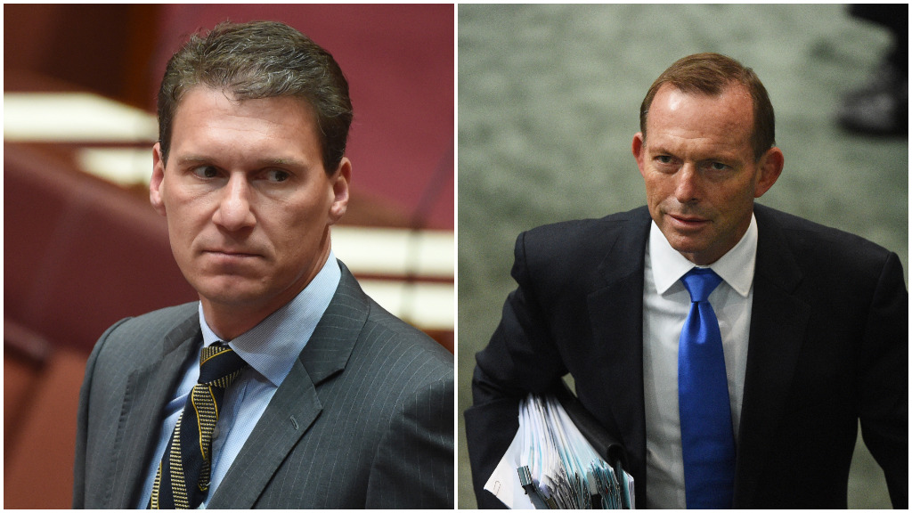 "A feud is brewing between Senator Cory Bernadi and former prime minister Tony Abbott over a ""Liberal Party split"". (AAP)"