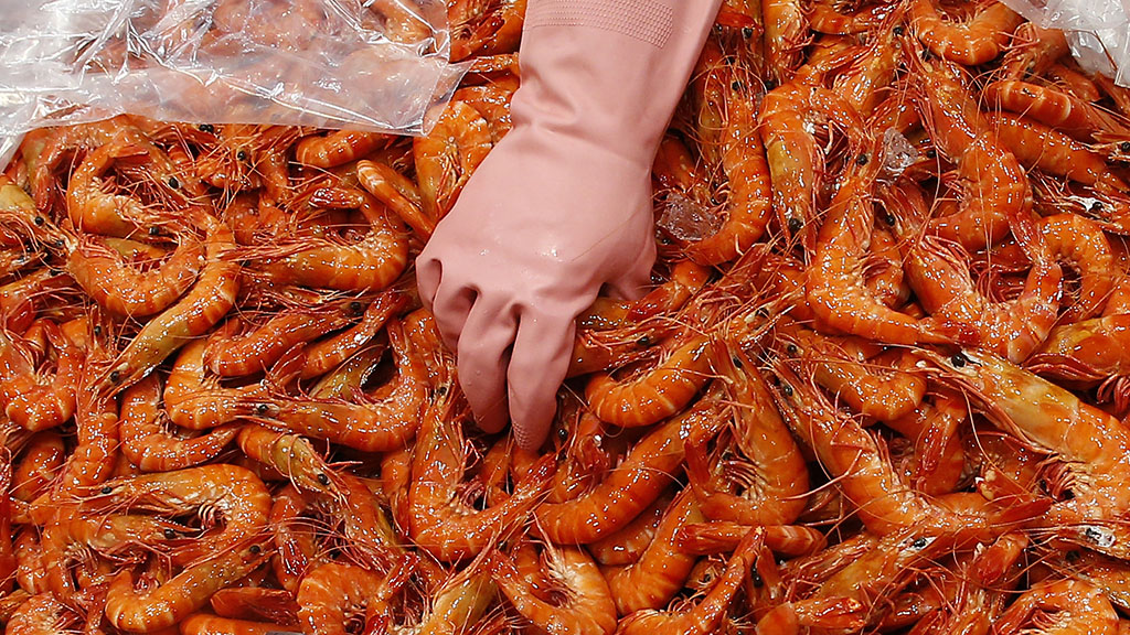 Fifth Queensland prawn farm tests positive for exotic virus