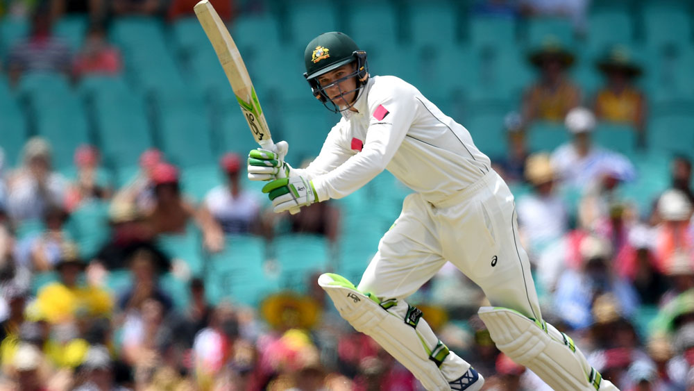 Handscomb to attack Indian Test spinners