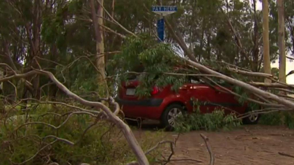 Canberra cleans up after freak windstorm
