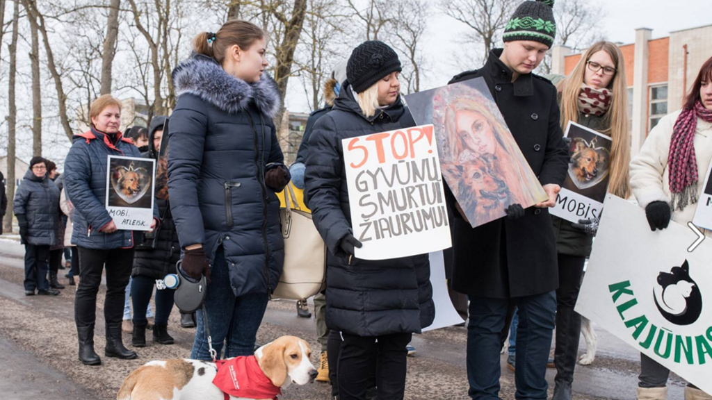 Protesters gathered in the Lithuanian village. (Facebook)