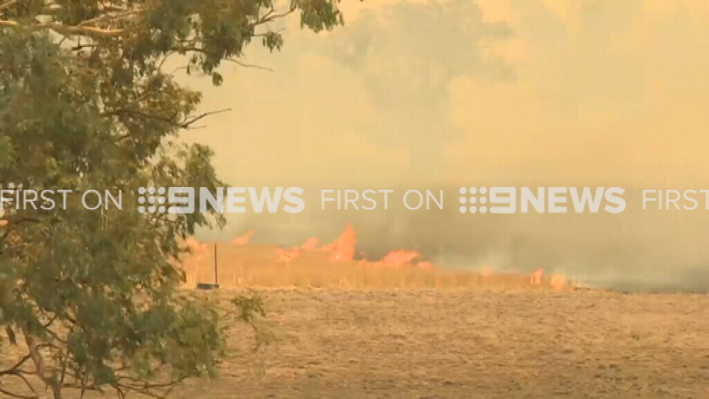 The fire front at Dunedoo. (9NEWS)