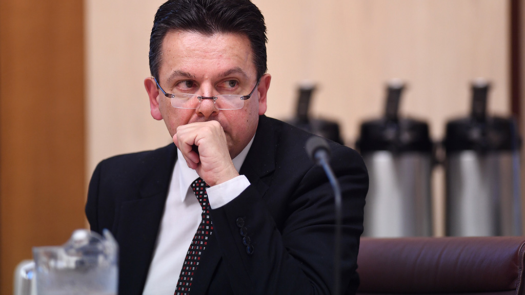 Xenophon seventh senator embroiled in citizenship saga