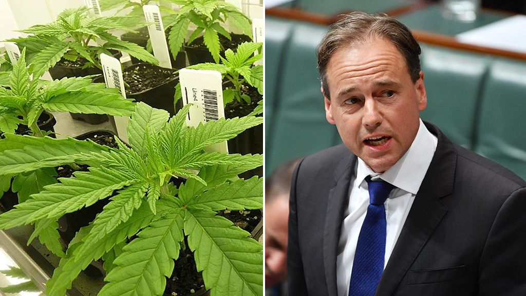 New laws to make access to medicinal cannabis easier for sick Australians