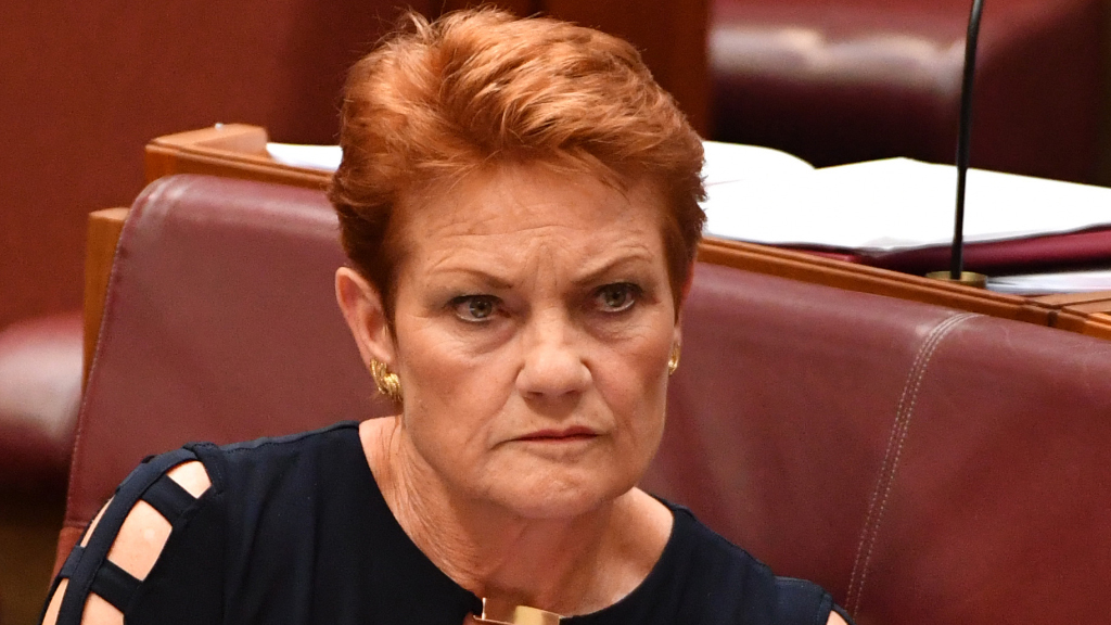 Pauline Hanson dumps One Nation WA candidates weeks out from election