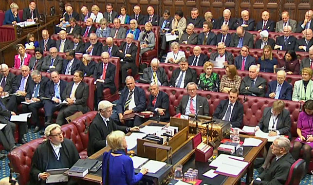 Brexit bill delay after Lords back rights of EU nationals