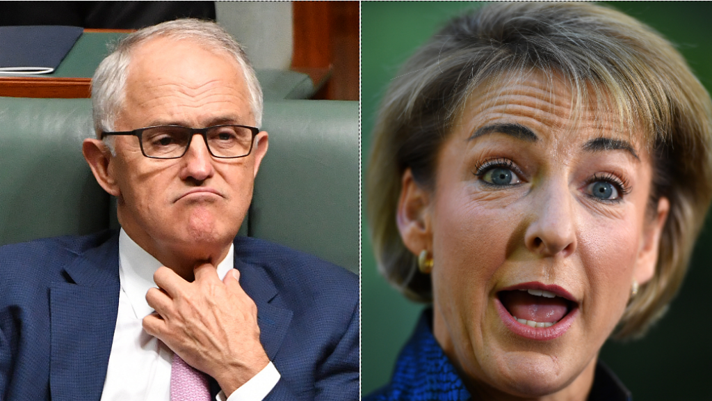 PM Turnbull 'accepts' Senator Michaelia Cash's apology for late declaration of million dollar property