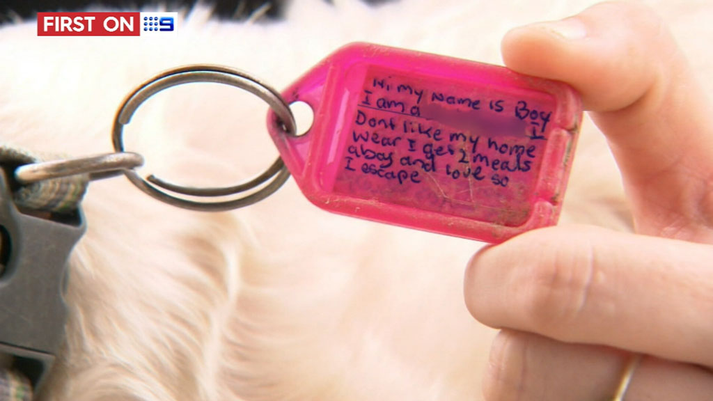 A tag Boy now wears on his adventures. (9NEWS)