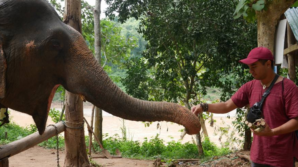 Mr Simeki posted a photograph with an elephant, in Laos, in late 2016. (Facebook)