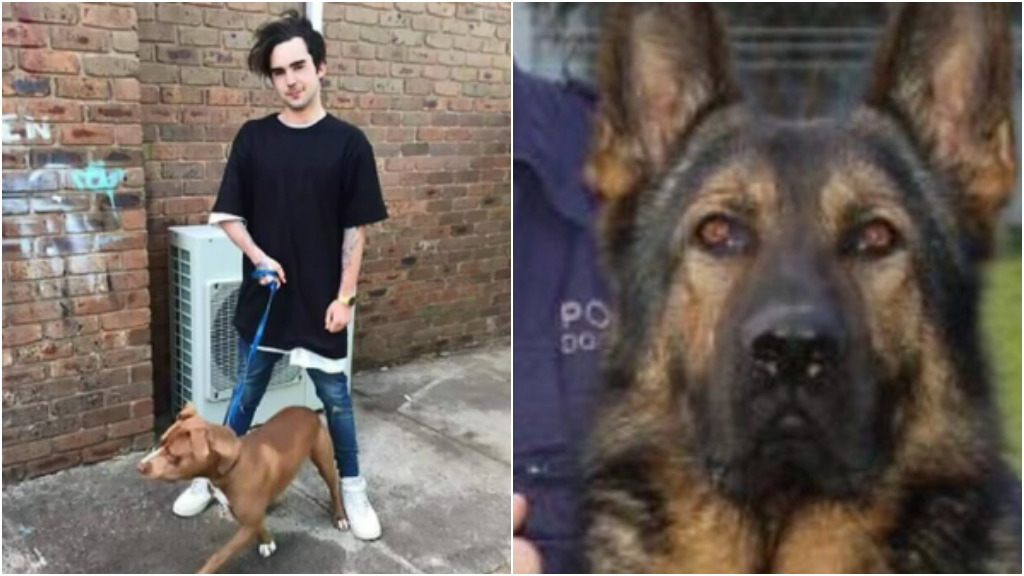 'Animal lover' refused bail after allegedly attempting to drown Victorian police dog