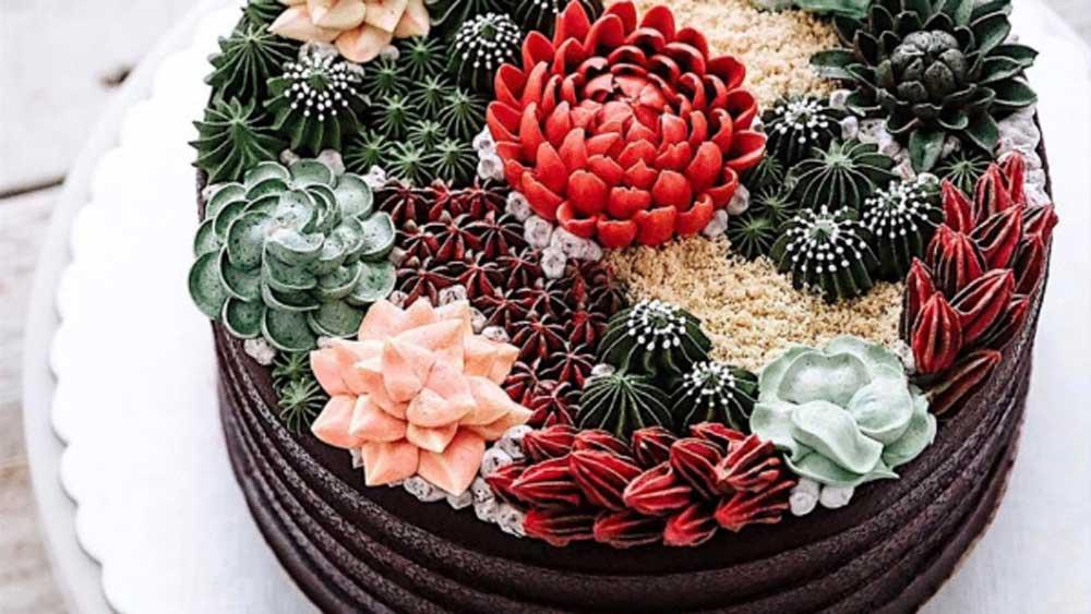 Succulent cake. Instagram/@ivenoven