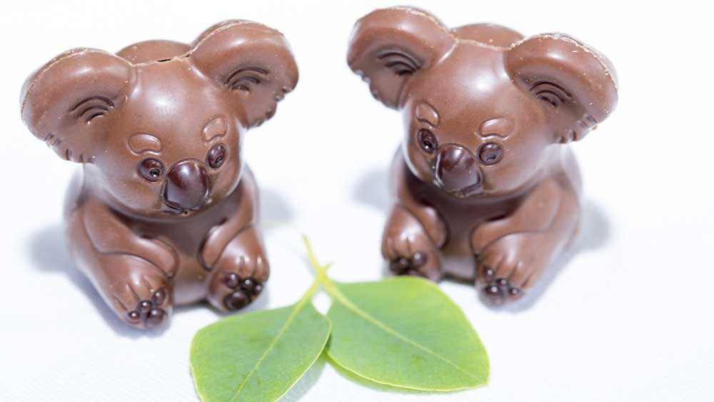 "Chocolate koalas aren't just an Aussie twist on the usual Easter themes, they also go to help a good cause. Wild Life Sydney Zoo has teamed up with the boutique chocolate maker Oh! Boo to offer these cute little chocolate mouthfuls, and money from the treats goes towards conservation, protection and research into koala habitats. But we wouldn't suggest them as an Easter treat if they didn't taste darn good too.      <br /> <br /> The koala-ty chocolates are available at both <a href=""Wild Life Sydney Zoo"" target=""_top"" draggable=""false"">Wild Life Sydney Zoo</a> and <a href=""http://ohboo.com.au/"" target=""_top"" draggable=""false"">Oh! Boo</a><br />  <br /> RRP - $9.95 for a box of four."
