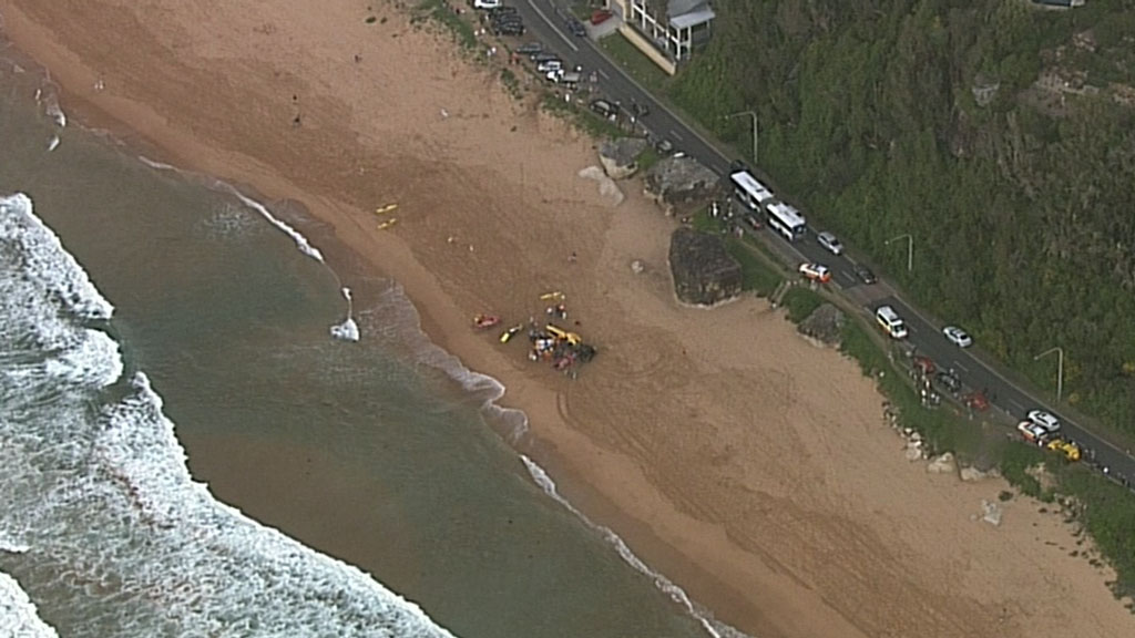 Palm Beach is located north of Sydney. (9NEWS)