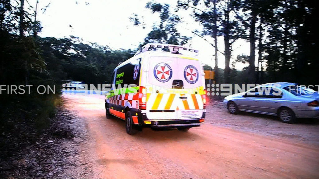 One boy was taken to hospital for treatment. (9NEWS)