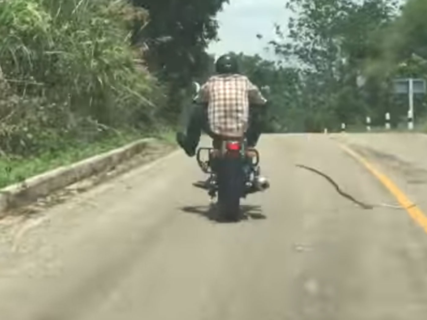 Motorcyclist takes evasive action to avoid 'flying' snake; video