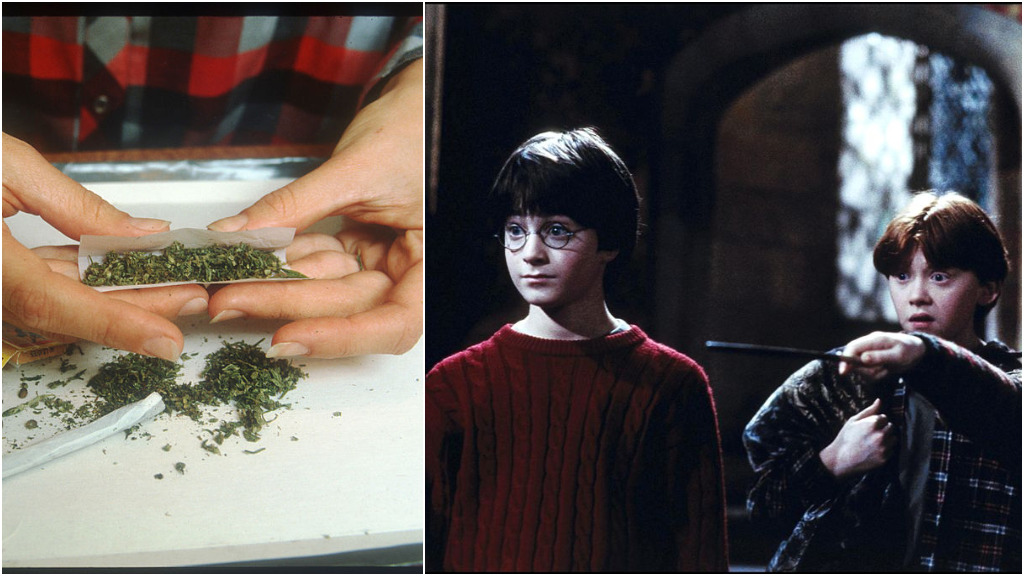 Teen named Harry Potter faces court accused of dealing cannabis