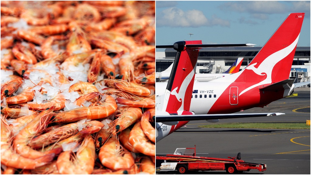 Queensland prawn farmers seek compensation from Qantas after foam spill